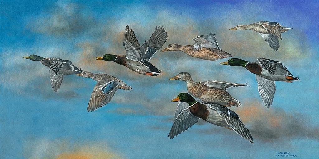 Ducks fly in formation in a blue sky