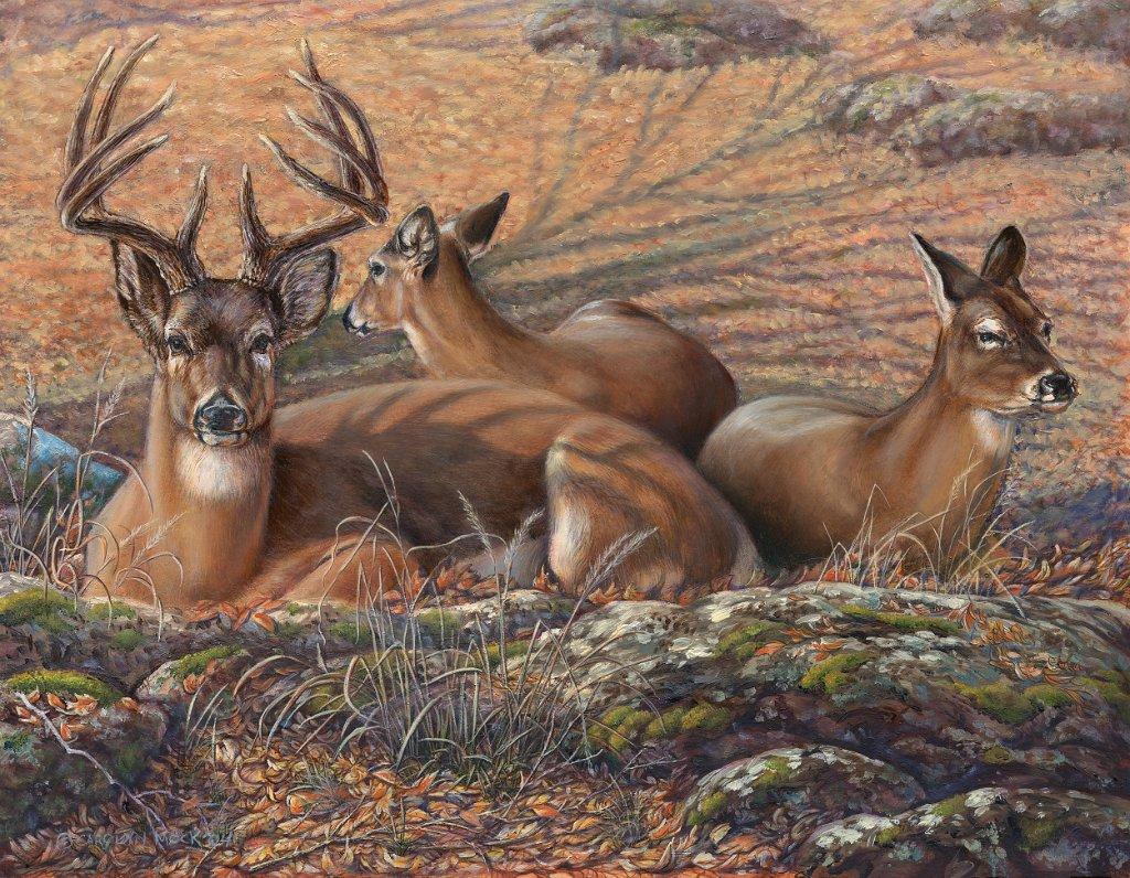 A herd of deer rest in a field of leaves