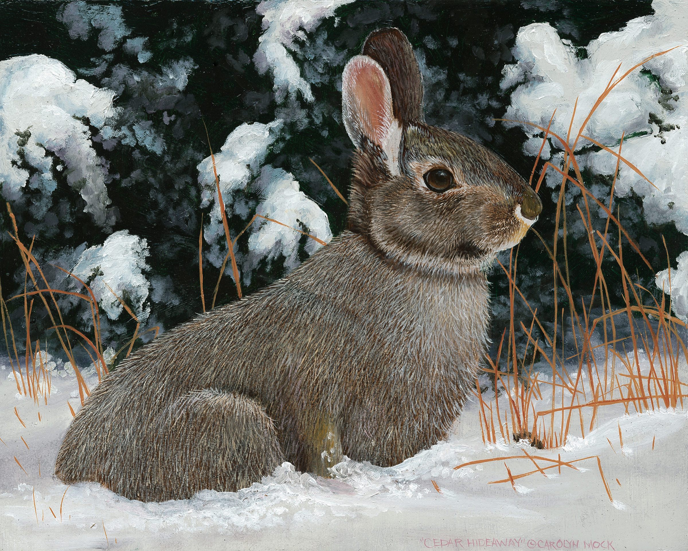 A small bunny takes shelter in a snowy field