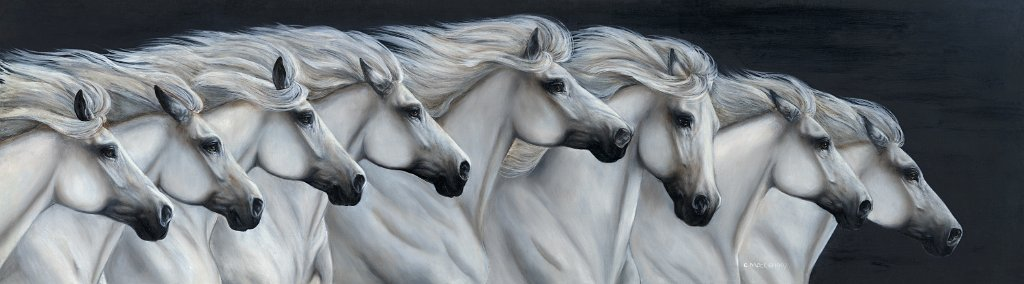 Eight white horses running in line