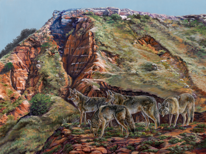A pack of wolves stand atop a hillside