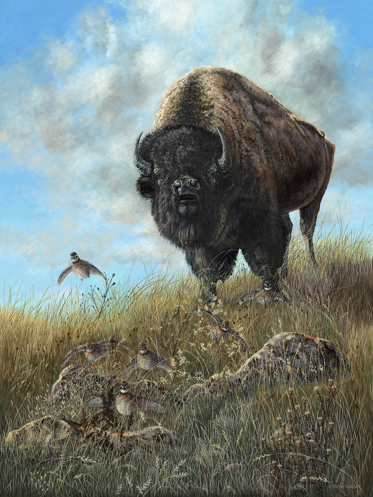 A bison in a field next to a bird