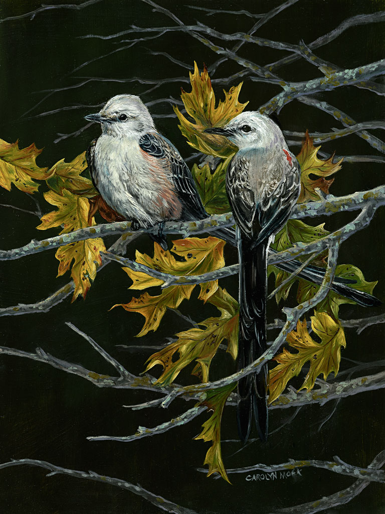 Two birds perched on a tree branch