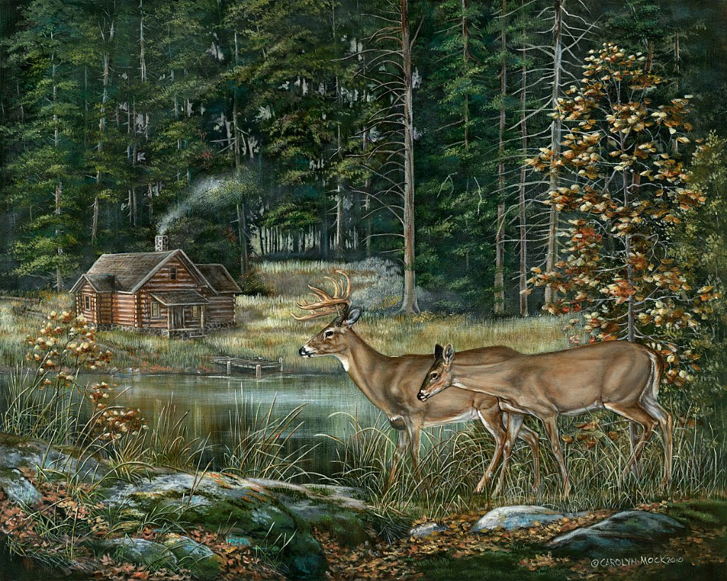 Deer standing by a pond on a homestead