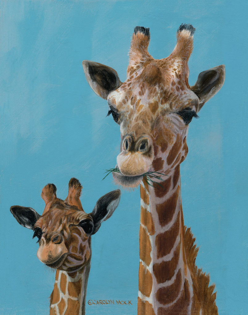 Two giraffes enjoy some greens
