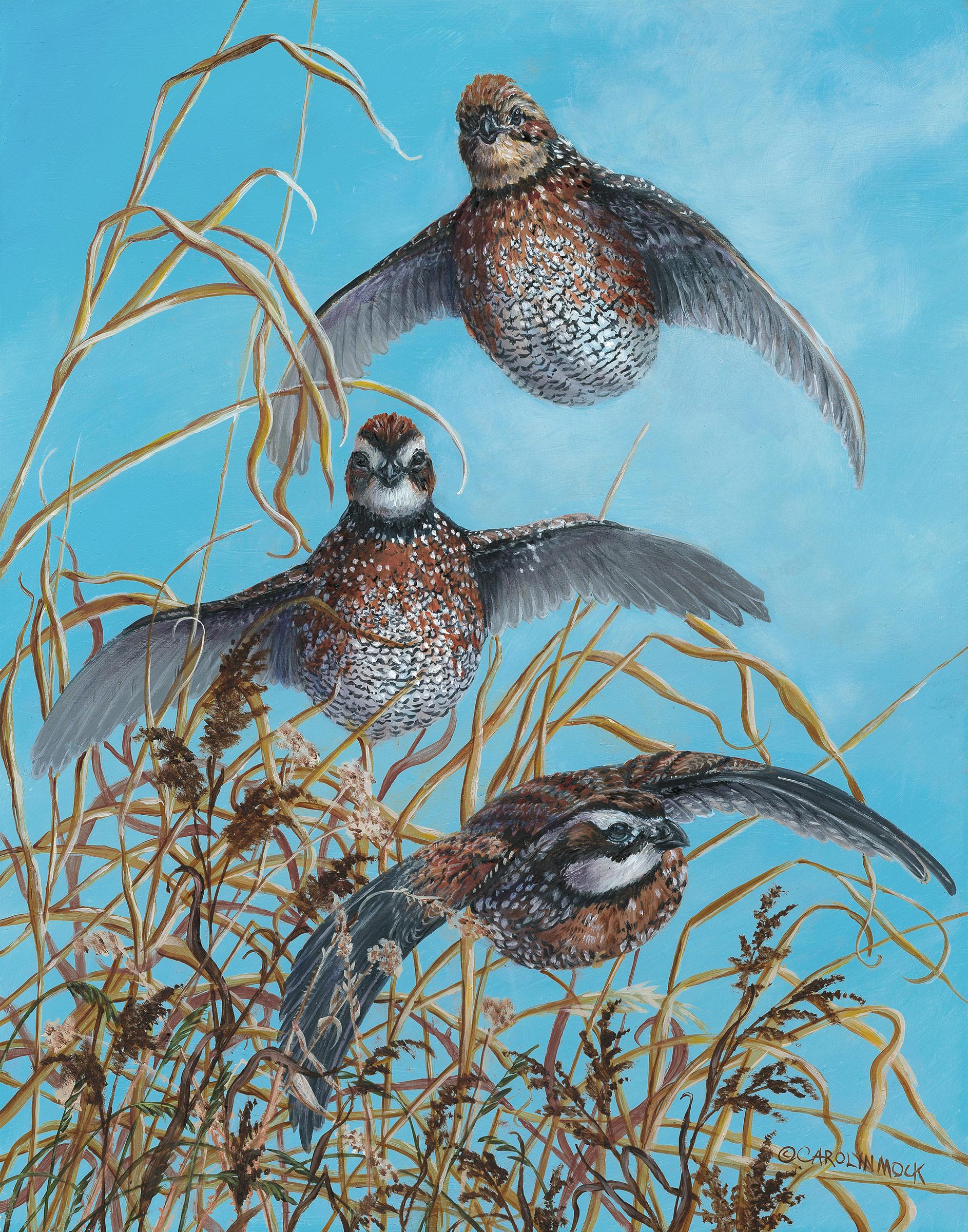 Three birds take flight from a field of grass