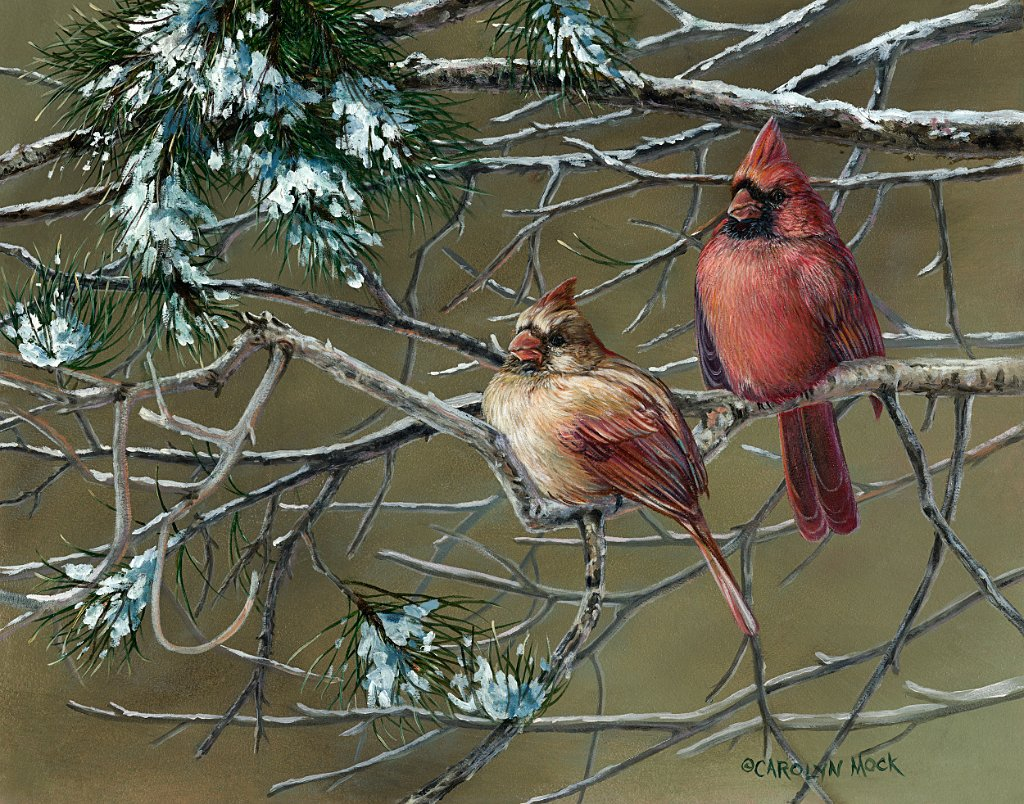 Cardinals perch on a tree branch in the snow