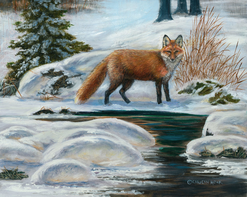 A fox stands next to a river in the snow