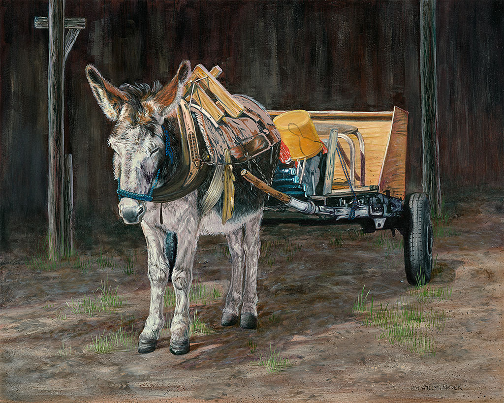 A donkey earns his snack by hauling a cart